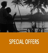 pipaltree hotel special service
